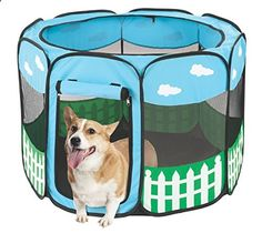 Dog playpen, perfect for anybody who doesnt want to tie out their dog, but dont want to protect them from running off.