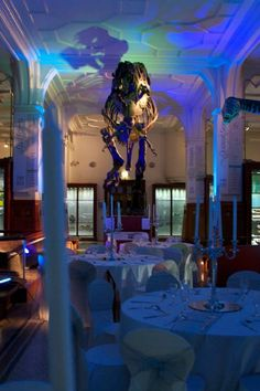 The Manchester Museum is a fascinating venue for a wedding.  This Grade 2 listed building offers flexible space for a wedding. Fossils Gallery - Wedding Breakfast: