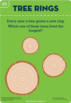 Count the Tree Rings Worksheet
