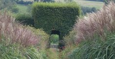Herefordshire garden defined by ornamental grasses. Design by Tom Stuart-Smith.