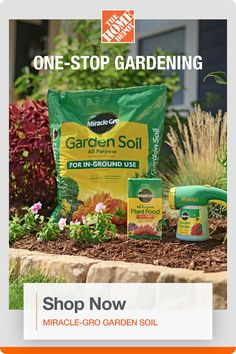 Shop all the Miracle-Gro products you need for the perfect garden at The Home Depot. Miracle-Gro All Purpose Garden Soil is enriched with continuous release plant food, feeds plants for up to 3 months and improves existing soil to help your plants build strong roots. Plus, Miracle-Gro Water Soluble All Purpose Plant Food instantly feeds vegetables, trees and shrubs to grow bigger and more beautiful than unfed plants. Simply feed every 1-2 weeks. Click now to shop. Feminized Boys, Garden Club, Garden Soil, Trees And Shrubs, Lawn Care, 3 Months, House Colors, Beautiful Gardens, Good To Know