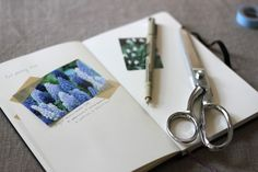 keep track of what you've grown in a garden journal   gardenista