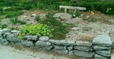 This rustic looking front yard for a cozy little bed and breakfast includes a nice stone bench.