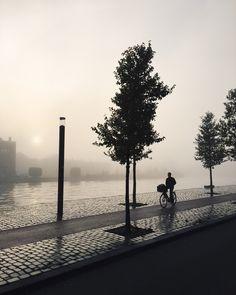 Gloomy mornings #haarlem | erikhageman | VSCO Vsco Photography, Street Photography, Black White Photos, Black And White, Holland, Amsterdam, Artsy, Photoshoot, In This Moment