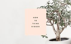 HOW TO THINK BIG WITHOUT LOSING YOUR MIND