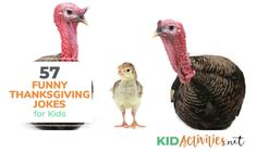 57 Thanksgiving Jokes for Kids (Funny Turkey Jokes) - Kid Activities