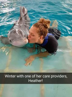 In the deepest parts of our hearts, everyone craves for a bit of luxury, things that transcend simple needs, comfort and beauty. Dolphin Tale 2, Dolphin Art, Animals And Pets, Baby Animals, Cute Animals, Clearwater Marine Aquarium, Bottlenose Dolphin, Marine Biology, Sea World