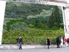 """The National Gallery in London unveiled a vertical garden that is a living reproduction of Van Gogh's """"A Wheatfield, with Cypresses,"""" using 8,000 living plants of more than 26 varieties."""