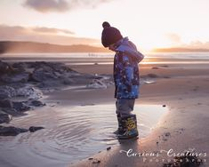 Child photography in Cornwall. Little boy on the beach at sunset. Cornwall family photographer based near Truro. Newborn Baby Photography, Maternity Photography, Children Photography, Baby Family, Children And Family, Roseland Peninsula, Outdoor Family Photography, Curious Creatures, Truro