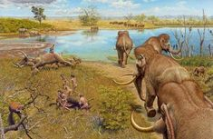Life on a German lake: A herd of prehistoric elephants startles a group of Neanderthals, busy breaking up an aurochs. In the background, hyenas feast on a dead mammoth, while in the distance rhinos are eating as a herd of wild cattle passes by. Prehistoric Wildlife, Prehistoric World, Prehistoric Creatures, Wildlife Art, Wassily Kandinsky, Jurassic Park World, Extinct Animals, Fauna, Vincent Van Gogh