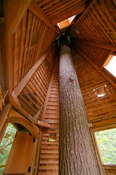 The inside of our magical treehouse at IslandWood by: Mithun. www.islandwood.org