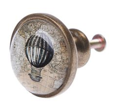 Cabinet of Curiosities | Shop by Collection | Wholesale Giftware ...
