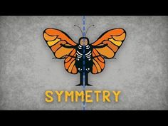 Here's a terrific video on symmetry that looks at the science of symmetry and explains how the symmetry of animals tells us more about them.