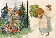Watercolor by Phoebe Wahl, Miss Ida and Her Beet