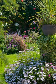 Private garden with summer flowers, early June, Winchelsea, England