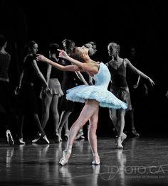 "balletwarrior: "" Oksana Bondareva rehearsing Swan Lake © Tarzan Dan """