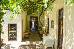 Cape Heritage Hotel courtyard - Presenting the oldest vine, baring fruits, in South Africa Cape Town Hotels, Things To Do, Old Things, Heritage Hotel, Best Hotels, South Africa, Explore, Mansions, City
