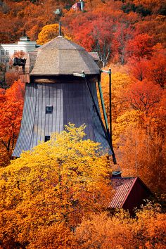 Autumn, Stockholm Sweden It's blades might be fixed (imovable thought theyalmost look removed) , but I know a windmill when I see one. Foto Picture, Seasons Of The Year, Belle Photo, Autumn Leaves, Beautiful Places, Simply Beautiful, Scenery, Places To Visit, Around The Worlds