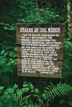 Prayer of the woods. I am the beam that holds your house. The board of your table. The bed on which you lie...Harm me not