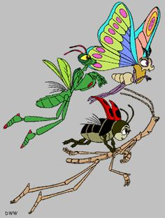 117 best a bugs life images on pinterest butterflies ladybugs
