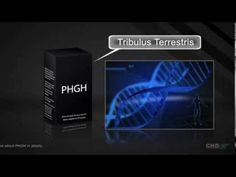 PHGH Reviews: Does PHGH Really Work?