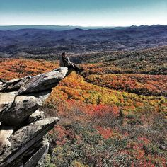 The colors are peaking along the blue ridge parkway.  Summer is behind us but it left some great colors