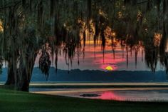 """The Town of Bluffton, South Carolina, in Beaufort County, grew along the bluff and banks of the May, Coosawhatchie, Cooper and New rivers—waters that blessed the area with fertile ground, rich biodiversity and breathtaking vistas. With photo and nature safaris, environmental talks, kayak and boat tours, """"from-heres"""" and """"come-heres"""" are encouraged to take a walk on the wild side."""