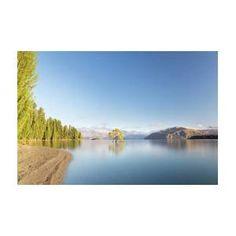 Wanaka Tree New Zealand Landscape Mountain Lake Art Print by Joshua Small