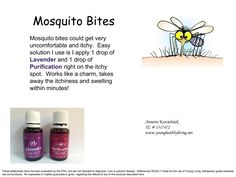 Mosquito bites. Young living essential oils