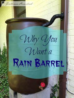230 Best Rain Harvesting Images In 2016 Gardens