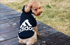 Angel Mall Adidog Hoodie Pet Clothes Dog Sweater Puppy Sweatshirt Warm Small Coat Christmas Gift 1pc Set Black S * Be sure to check out this awesome product.