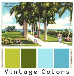 PonyBoy Press: Vintage Color Palettes - Biscayne Bay Hang pics like this in bar? Scheme Color, Colour Pallette, Colour Schemes, Color Combos, Vintage Colour Palette, Vintage Colors, Color Style, Colour Colour, Vintage Florida