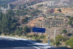 ZEYBEK:   Der Olivenhain der Familie Özbek liegt im wunder...