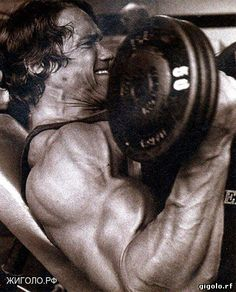 bodybuilding and fitness man gigolo.rf Арнольд качает бицепс