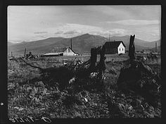 Evanson new home, looking across land which has recently been cleared by bulldozer. Priest River Valley, Bonner County, Idaho. See general caption 49, 54