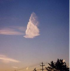 Here is one of my favorite angel cloud photos. Real Angels, I Believe In Angels, Angels Among Us, Angel Clouds, Sky And Clouds, Angel Sightings, Angel Silhouette, Costa, Spiritual Images