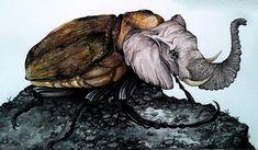 Animal-Insect Hybrids by Paula Duta on BoredPanda