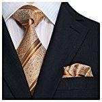 "Landisun SILK Paisleys Mens Silk Tie Set: Tie+Hanky 10L Copper Novelty Pattern, 3.75""Wx59""L"