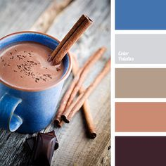 Warm shades of brown combined with dark blue and gray will look good in a bedroom. Use cocoa as basis..