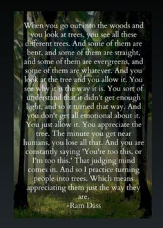 Trees just are. ..