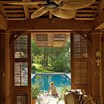 backyard paradise - one day