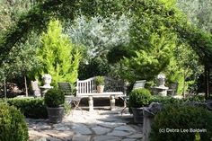 MajesticViewsAroundTheGarden: Lani Freymiller's garden photo by Debra Lee Baldwin