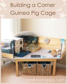 Guinea Pig Hutch, Guinea Pig Food, Guinea Pig House, Pet Guinea Pigs, Guinea Pig Care, Diy Guinea Pig Toys, Cage Petit Animal, Animal Cage, Hamsters