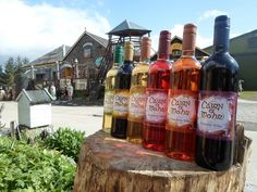 Perthshire-based wine company Cairn O'Mohr make the most of the annual Scottish berry bounty by turning it into a range of delicious fruit wines. Their dry, sparkling Scottish oak and elder wine is a great alternative to champagne. Distillery, Brewery, Scottish Dishes, Tartan Wedding, Wine Offers, Garden Venue, Wedding Dress Cake, Wedding Dresses, Wine Gift Boxes