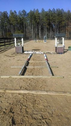 "pole grid for super clumsy & crooked baby horse. Poles are 3'6"" apart. Use flat landscaping poles so they don't roll. Start by walking over it in both directions with halts occasionally. Later trot it slowly. Even if they start out by tripping on their shadow, they will learn after a couple days!"