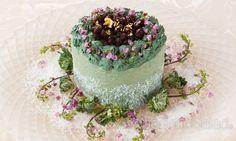 Vegedeco Salad - Heartful Green