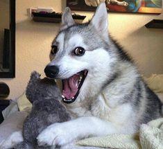 Los 49 peores chistes de la historia   Verne EL PAÍS