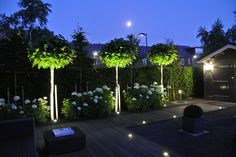 10 Best Garden Lighting Ideas for Exterior Lighting 2019 – New Decoration - Bepflanzung Contemporary Garden Design, Landscape Design, Exterior Lighting, Outdoor Lighting, Lighting Ideas, Back Gardens, Outdoor Gardens, Diy Jardin, Hydrangea Care