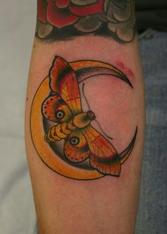 Moth on moon