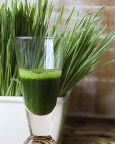5 Foods To Promote Detoxification In Your Body